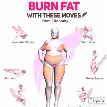 FAT BURNING WORKOUTS 6 fat burning workout for you entire body, to help you in your weight loss jou